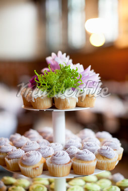 Cupcakes on Stand Stock Photo - Premium Royalty-Free, Artist: Ikonica, Code: 600-05786649