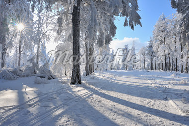 Snow Covered Path, Rennsteig, Grosser Inselsberg, Brotterode, Thuringia, Germany Stock Photo - Premium Royalty-Free, Artist: Raimund Linke, Code: 600-05803711