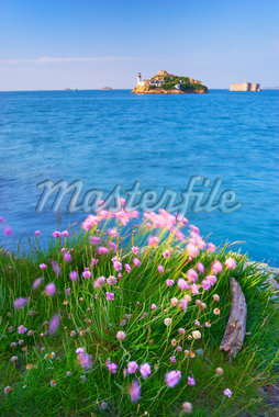 View of Louet Island and Chateau de Taureau, Bay of Morlaix, Finistere, Bretagne, France Stock Photo - Premium Rights-Managed, Artist: Tim Hurst, Code: 700-05803758