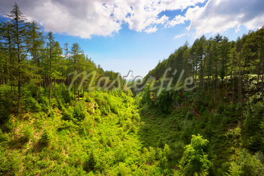 Valley, Dumfries & Galloway, Scotland Stock Photo - Premium Rights-Managed, Artist: Tim Hurst, Code: 700-05803771