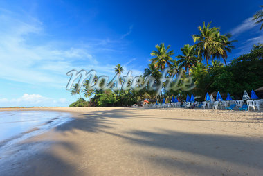 Praia de Coqueirinho, Paraiba, Brazil Stock Photo - Premium Rights-Managed, Artist: Jean-Yves Bruel, Code: 700-05810258