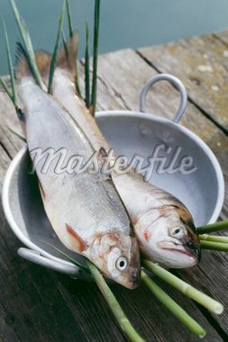 Fresh trouts Stock Photo - Premium Rights-Managed, Artist: Photocuisine, Code: 825-05836672