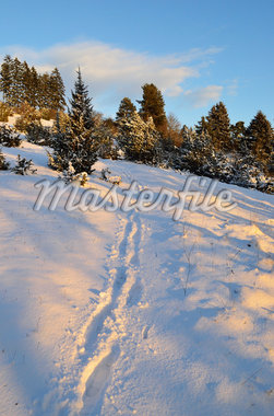Winter Landscape near Villingen-Schwenningen, Black Forest, Baden-Wurttemberg, Germany Stock Photo - Premium Royalty-Free, Artist: Jochen Schlenker, Code: 600-05837467