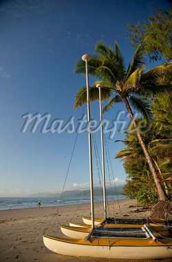 Four Mile Beach with coconut palm trees, Port Douglas, Queensland, Australia, Pacific Stock Photo - Premium Rights-Managed, Artist: Robert Harding Images, Code: 841-05846111