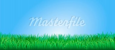 Green grass field or lawn under a clear blue sky Stock Photo - Royalty-Free, Artist: Krisdog                       , Code: 400-05892229