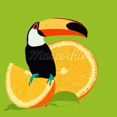 Bird Stock Photo - Royalty-Free, Artist: james2000                     , Code: 400-05912100