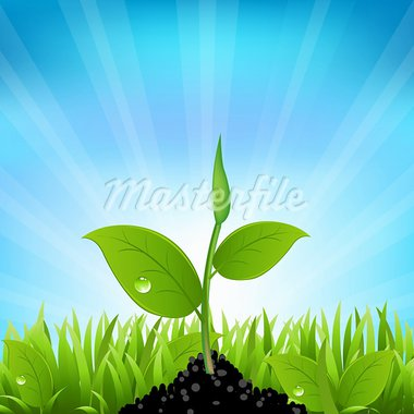 Beams And Grass, Vector Background Stock Photo - Royalty-Free, Artist: barbaliss                     , Code: 400-05921118
