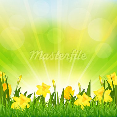 Flowers Easter Background, Vector Background Stock Photo - Royalty-Free, Artist: adamson                       , Code: 400-05921306