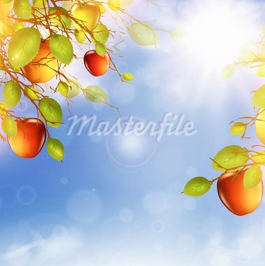 illustration of apple tree over blue sky with summer sun Stock Photo - Royalty-Free, Artist: SNR                           , Code: 400-05923146