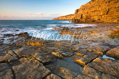 Early morning sunshine glows golden on the cliffs at Seacombe on the Isle of Purbeck, Jurassic Coast, UNESCO World Heritage Site, Dorset, England, United Kingdom, Europe Stock Photo - Premium Rights-Managed, Artist: Robert Harding Images, Code: 841-05962220