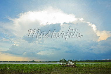 Backlit storm cloud over a lagoon (tank) at Kumana National Park, formerly Yala East, Kumana, Eastern Province, Sri Lanka, Asia Stock Photo - Premium Rights-Managed, Artist: Robert Harding Images, Code: 841-06032724