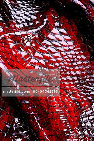 Snakeskin texture - leather background Stock Photo - Budget Royalty-Free, Image code: 400-04068395