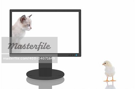 3D Render of a computer monitor with a kitten looking to a baby chick outsite.