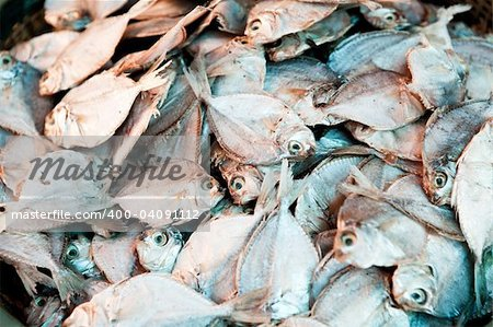 A background of dried white fish Stock Photo - Budget Royalty-Free, Image code: 400-04091112
