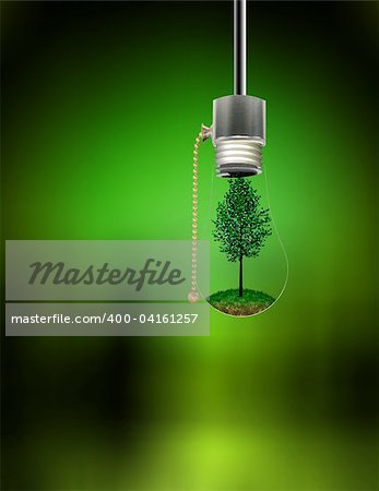 Tree in Hanging Bulb Stock Photo - Budget Royalty-Free, Image code: 400-04161257