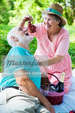 Senior couple on a romantic picnic in the park.  She is feeding him grapes. Stock Photo - Budget Royalty-Free, Image code: 400-04208630