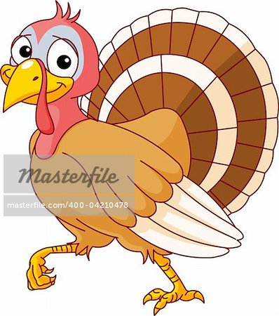 Walking Thanksgiving Turkey. Isolated on a white background. Stock Photo - Budget Royalty-Free, Image code: 400-04210478