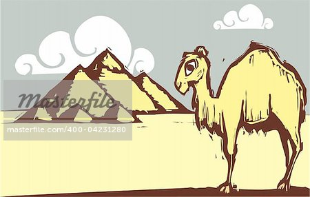 Single hump camel in woodcut style by pyramids.