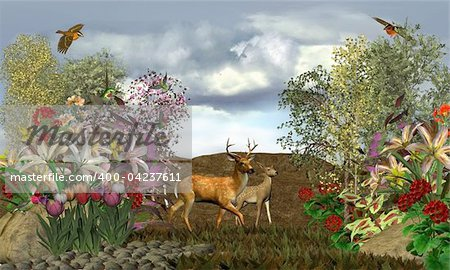 2 deer on a stroll through their forest Stock Photo - Budget Royalty-Free, Image code: 400-04237611