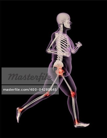 3D render of an overweight female skeleton running showing pressure points on joints Stock Photo - Budget Royalty-Free, Image code: 400-04280645