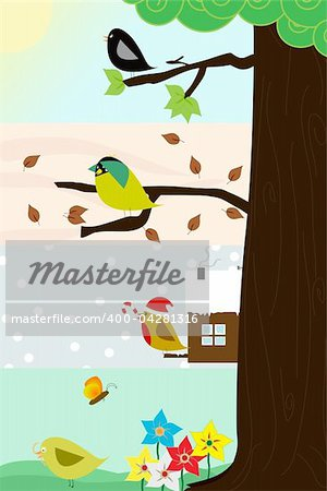 Four birds sitting in the same thee, through the four different season. Vector image