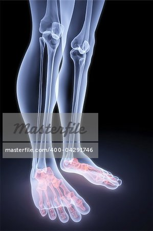 male feet under the X-rays. bones are highlighted in red. Stock Photo - Budget Royalty-Free, Image code: 400-04291746