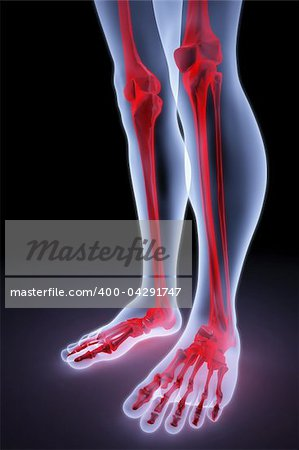 male feet under the X-rays. bones are highlighted in red. Stock Photo - Budget Royalty-Free, Image code: 400-04291747