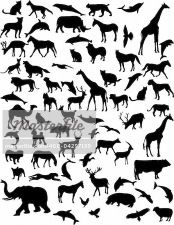 collection of 68 animals - vector Stock Photo - Budget Royalty-Free, Image code: 400-04297199