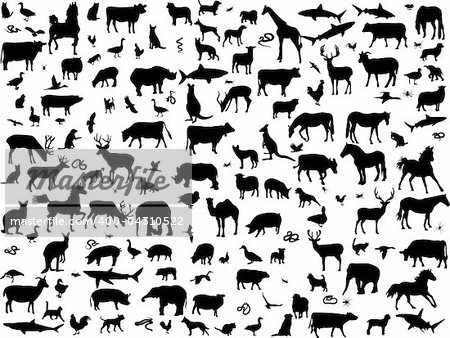 big collection of different animals silhouette - vector Stock Photo - Budget Royalty-Free, Image code: 400-04310522