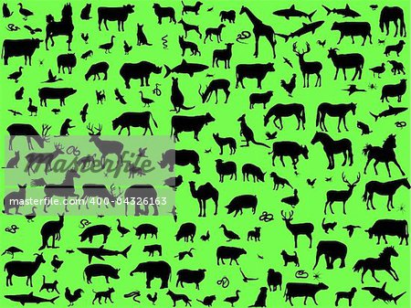 big collection of mix animals - vector Stock Photo - Budget Royalty-Free, Image code: 400-04326163