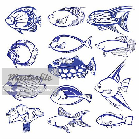 Tropical Fish Set. Raster version. Vector version is in my gallery.