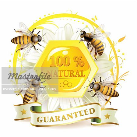Bees and honeycombs over floral background isolated on white Stock Photo - Budget Royalty-Free, Image code: 400-04353089