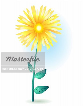 Vector illustration of a yellow gerbera