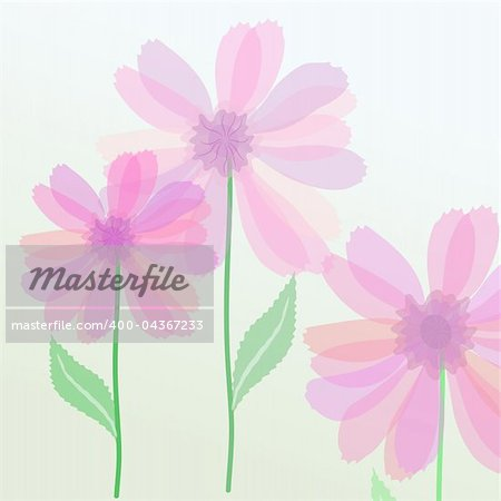 Vector illustration of transparent purple flowers