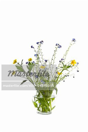 Seasonal wild flowers in glass vase on white background