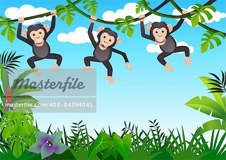Chimpanzee cartoon vector Stock Photo - Budget Royalty-Free, Image code: 400-04394041