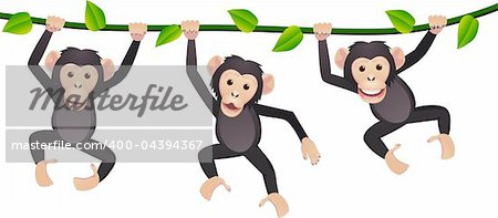 Chimpanzee cartoon vector Stock Photo - Budget Royalty-Free, Image code: 400-04394367