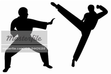 an  images  of    martial arts