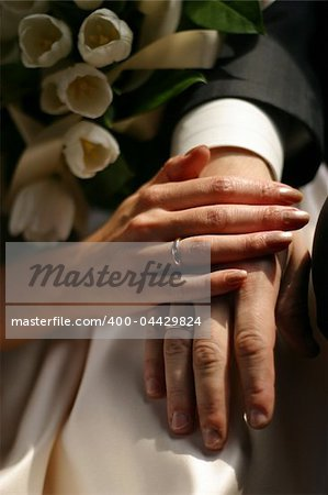 The groom keep the bride for hands Stock Photo - Budget Royalty-Free, Image code: 400-04429824