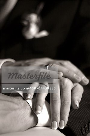 The groom keep the bride for hands. b/w+sepia Stock Photo - Budget Royalty-Free, Image code: 400-04430880