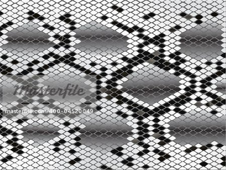 Vector snake skin lozenge pattern in black grey and white Stock Photo - Budget Royalty-Free, Image code: 400-04520049
