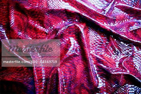 Snakeskin texture - leather background Stock Photo - Budget Royalty-Free, Image code: 400-04569719