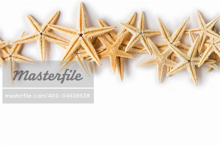 Line of Starfish on a white background