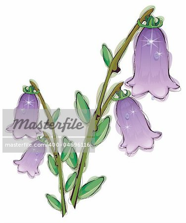 illustration drawing of purple flower in a white background