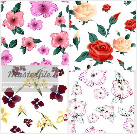 Four cute floral seamless pattern. Vector illustration