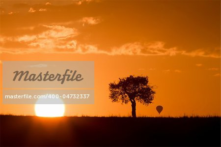 Masai mara sunrise with acacia tree and distant hot air balloon Stock Photo - Budget Royalty-Free, Image code: 400-04732337