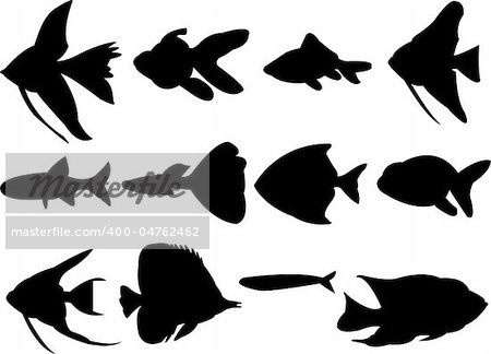 collection of aquarium fish silhouette - vector Stock Photo - Budget Royalty-Free, Image code: 400-04762462