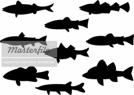 collection of fish silhouette - vector Stock Photo - Budget Royalty-Free, Image code: 400-04789416