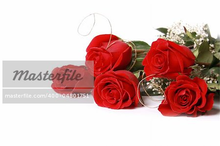 Beautiful red roses on a white background with space for copy. Stock Photo - Budget Royalty-Free, Image code: 400-04801751