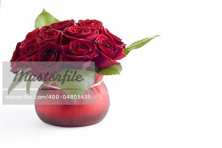 Beautiful roses in the red pot over white background Stock Photo - Budget Royalty-Free, Image code: 400-04805635